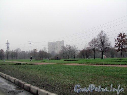 Муринский парк со стороны Северного проспекта напротив «Северного рынка». Фото 25 ноября 2012 г.