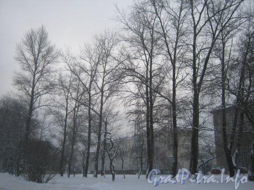 Сквер перед ДК им. И.И. Газа. Вид из сквера в сторону домов по нечётной стороне ул. Новостроек. Фото утро 10 декабря 2012 г.