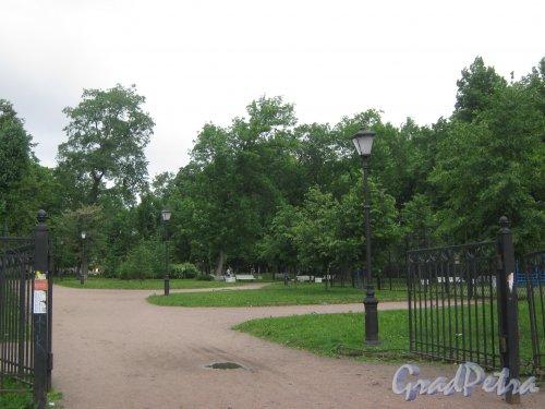 Сад Сан-Галли. Вид с ул. Черняховского. Фото 12 июня 2013 г.