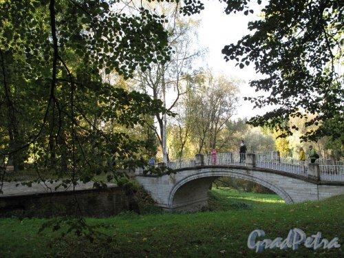 парк Павловский. Мост через овраг у Дворца. Фото октябрь 2009 г