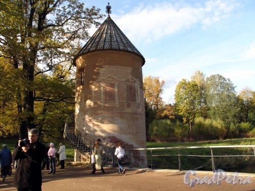 парк Павловский. Пиль Башня. Фото октябрь 2009 г