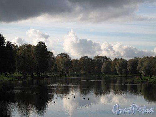 Муринский парк. Вид на разлив Муринского ручья. Фото октябрь 2012 г.