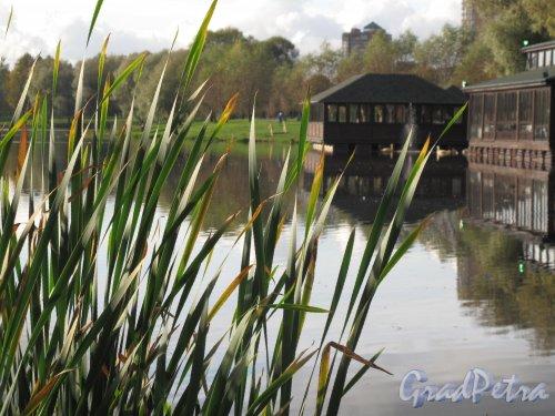 Муринский парк. Плавучие павильоны ресторана «Чинар». Фото октябрь 2012 г.
