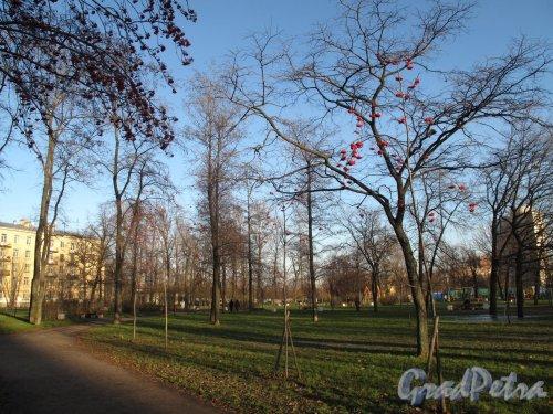 Малоохтинский сад. Общий вид. фото ноябрь 2012 г.