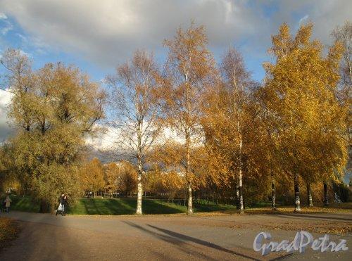 Муринский парк. Пересечение велосипедных дорожек. Фото октябрь 2013 г.
