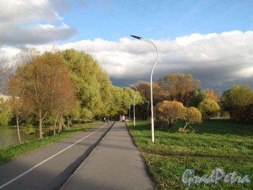 Муринский парк. Велосипедная дорожка к Центру «Родео Драйф». Фото октябрь 2013 г.