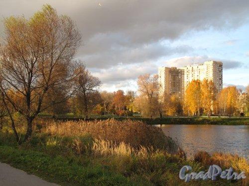 Муринский парк. Вид аллею вдоль озера и офис ЦДС. Фото октябрь 2013 г.