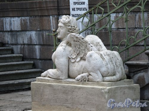 Гатчинский (Дворцовый) парк. Собственный садик. Статуя Сфинкса. Фото август 2013 г.