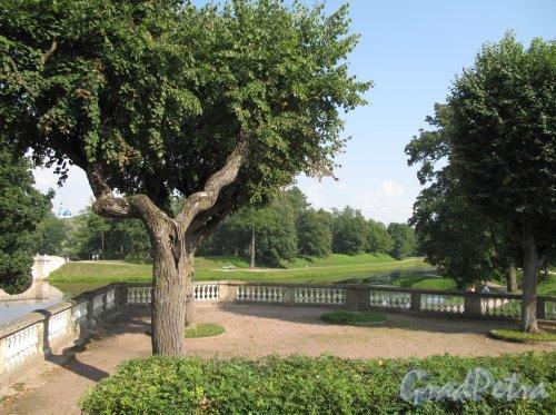 Гатчинский (Дворцовый) парк. Собственный садик. Смотровая пощадка. Фото август 2013 г.
