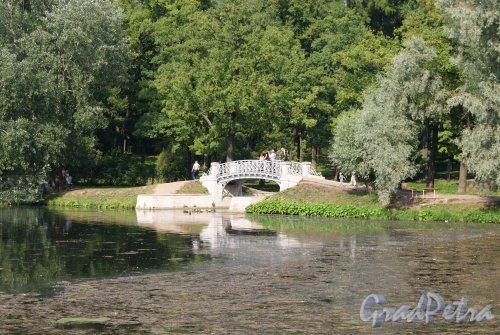 Гатчинский (Дворцовый) парк. Водный лабиринт. Мостик. Фото август 2013 г.