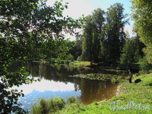 Шуваловский парк. Пруд «Шапка Наполеона» со стороны холма «Парнас». Фото сентябрь 2011 г.