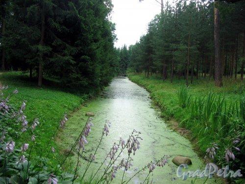 Екатерининский парк (г. Пушкин). Красный канал. Фото август 2005 г.