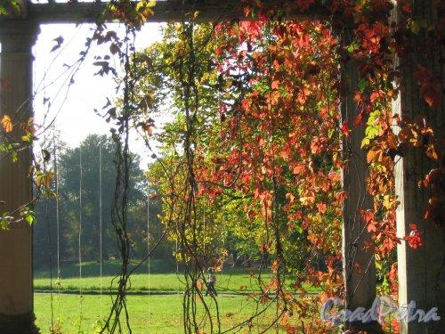 Екатерининский парк (г. Пушкин). Собственный садик. Вид из Перголы. Фото сентябрь 2007