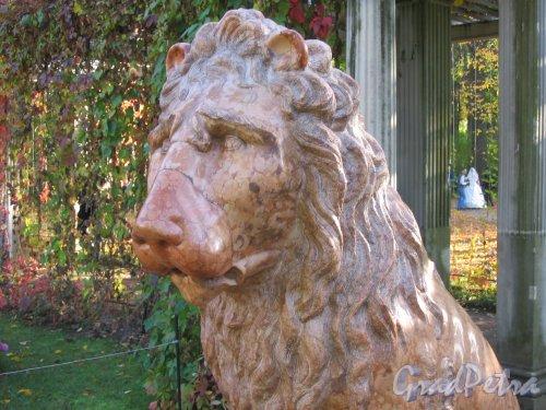 Екатерининский парк (г. Пушкин). Собственный садик. Декоративная скульптура. Фото сентябрь 2007 г.