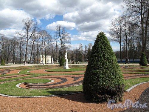 Екатерининский парк (г. Пушкин). Большой дворец. Регулярный сквер перед входом. Фото май 2012 г.
