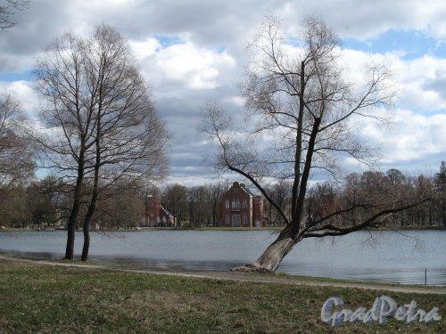 Екатерининский парк (г. Пушкин). Большое озеро и Адмиралтейство. Фото май 2012 г.