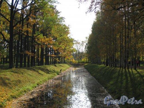 Александровский парк (г. Пушкин). Обводный канал. Фото сентябрь 2007 г.