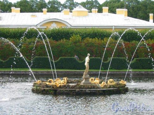 Верхний парк (Петергоф). Квадратный пруд и фонтан. Фото сентябрь 2006 г.