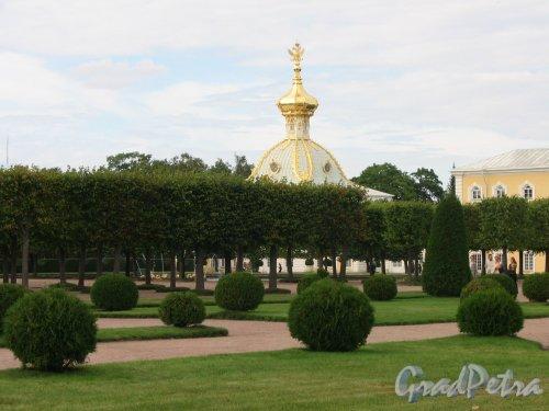 Верхний парк (Петергоф). Вид на липовую аллею и часть Большого Дворца. Фото сентябрь 2006 г.