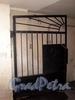 Финляндский пер., д. 4. Бывший дом А. П. Брюллова. Решетка ворот. Фото октябрь 2009 г.