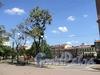 Спортивная площадка и сквер на месте бывшего Пустого рынка. Фото август 2010 г.