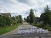 Безымянный переулок в Мартышкино. Фото 2010 г.