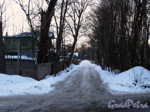 перспектива Мгинского переулка от Поклонногорской улицы. Фото февраль 2013 г.
