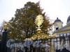 Элемент ограды Спасо-Преображенского собора