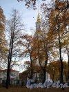 Никольская пл. Никольский сад. Вид на Колокольню Никольского Собора со стороны сада. Фото октябрь 2013 г.