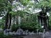 Аптекарский пр., д. 16. Дом физкультуры. Общий вид. Фото 26 мая 2010 г.