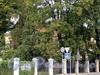 Константиновский пр., д. 21. Особняк Ф.К. Калинина (В.И. Левтеевой). Общий вид. Фото сентябрь 2010 г.
