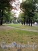 Загородный пр., д. 62 / Верейская ул., д. 1. Сквер на месте снесенной латышской церкви Христа Спасителя. Вид в сторону Загородного проспекта. Фото август 2010 г.