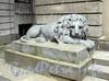 Кронверкский пр., д. 5. Скульптура льва перед парадным входом. Фото октябрь 2010 г.