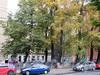 Кронверкский пр., д. 29. Общий вид. Фото октябрь 2010 г.