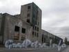 Пр. Энергетиков, д. 8, общий вид здания от Заневского пр.а. Фото август 2008 г.