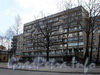 Большеохтинский пр., д. 1, корп. 1. Фрагмент фасада жилого дома. Фото апрель 2009 г.