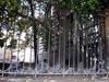 Фрагмент ограды между домами 31 и 35 по Большому проспекту В.О. Фото август 2009 г.