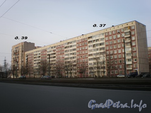 Дома 37 и 39 по Тихорецкому пр.у, вид от парка Сосновка. Апрель 2009 г.