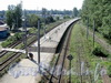 Ж/д станция «Новая деревня». Платформа. Фото август 2011 г.