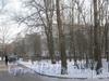 Пр. Народного ополчения, дом 241, корпуса 2-5. Вид пятиэтажек стоящих во дворе корп. 1 сквозь деревья. Фото февраль 2012 г.