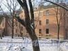 Ириновский пр., дом 41, корп. 2. Общий вид со стороны двора. Фото февраль 2012 г.