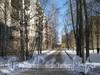 Пр. Ветеранов, дом 152, корп. 1. Проезд вдоль дома в сторону ул. Тамбасова. Фото февраль 2012 г.