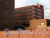 Бол. Сампсониевский пр., д. 64, лит. Б. Фрагмент фасада. Вид с Выборгской набережной. Фото сентябрь 2011 г.