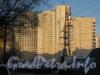Ленинский пр., дом 99. Строительство нового жилого дома. Вид со двора. Фото март 2012 г.