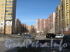 Жилой комплекс от дома 79 корпус 2 по Ленинскому пр. (справа). Фото март 2012 г.