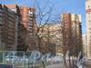 Ленинский пр., дом 77 корпус 1. Вид на здание со стороны двора дома 79 корпус 1. Фото март 2012 г.