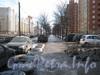 Перспектива аллеи вдоль Ленинского пр. с нечётной стороны от пр. Кузнецова в сторону Брестского бульвара. Фото март 2012 г.