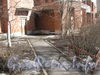 Ленинский пр., дом 95, корпус 1. Общий вид декоративных посадок перед домом. Фото март 2012 г.