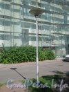 Микрорайон «Форели». Пр. Стачек, дом 158. Косметический ремонт части здания со стороны двора домов 160 и 170 и фонарь перед домом. Фото 13 августа 2012 г.