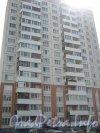 Пр. Народного Ополчения, дом 237. Общий вид со стороны дома 241 корпус 1. Фото 2 июля 2012 г.